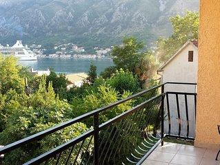 Radovic(Sole) Apartments Dobrota 1