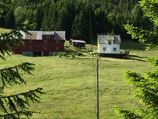 Charming holiday home / small farm for rent in Ofredalen in Årdal municipality.