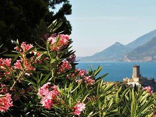 Bilocale 'romantico' con splendida vista lago OFFERTA SPECIALE 7 NOTTI, piscina