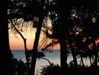 SAINT PALAIS SUR MER à 100 m de l'océan-VILLA PAISIBLE INDEPENDANTE-ROYAN à 7 km