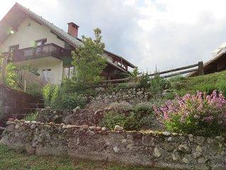 Sonnenterasse mit Ausblick, komfortables Apartment in Natur - A2*** BioFit Bled