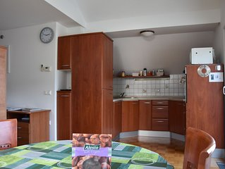 Apartment Kranj, 80 m2, super fast free WI-FI, AC, free parking, huge terrace