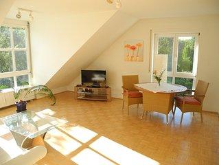 Moderne, helle 2-Zi-Wohnung in der Schützenstraße ca. 250 m von der Altstadt.
