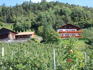Ferienbauernhof Masunerhof inmitten unserer Obstwiesen, kinderfreundlich