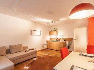 Wohnen am Ringpark - moderne Wohnung am Mainufer mit Blick auf Festung//Kappele