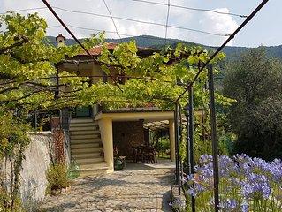 Saniertes Ferienhaus in Ligurien, Riviera, Meerblick, gr. Garten (Oliven, Wein)