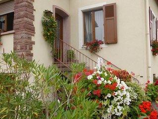 Gite dans une grande maison au centre de Colmar avec jardin et parking gratuit