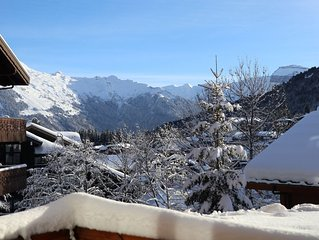 Appartement pied des pistes - Morillon les Esserts 1100 French Alps - WIFI