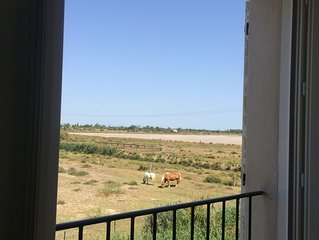 Salin De Giraud-Camargue: Appartement au 1er etage avec exterieur privatif