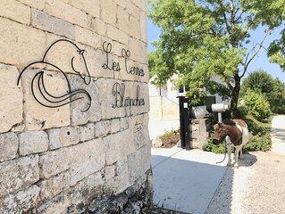 Gite en pierre au sud du Lot, Occitanie. Calme, nature, campagne, etang, chevaux