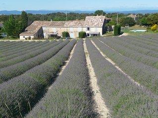 En Drôme Provençale, gîte de charme au milieu des lavandes, vignes et truffières