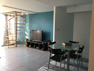 Beau T2 duplex 54m2 très lumineux et spacieux