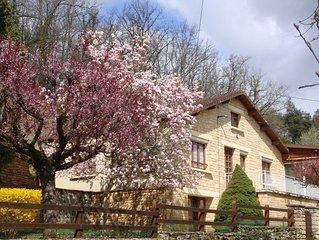 Les Terrasses - Grande maison en pierre renovee
