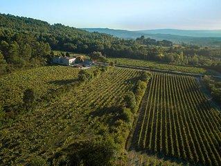 Gite du Vignoble Chateau Saint Pons dans le parc Naturel du Luberon