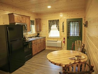 New! Cabin Suite with Kitchen, Fireplace, Living Room, King Master Bedroom