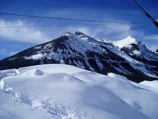 Yellowstone Park Mountain Retreat