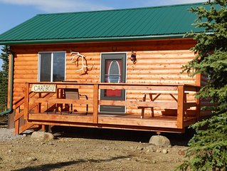 2020 PRESEASON RATE! Denali Wildlife Caribou Cabin Luxury with a touch of Rustic