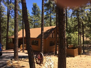 Beautiful Log Cabin on an acre in the tall pines with fenced yard for dogs!