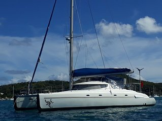 North or South from St Lucia Martinique up or Grenadines in style - You choose!