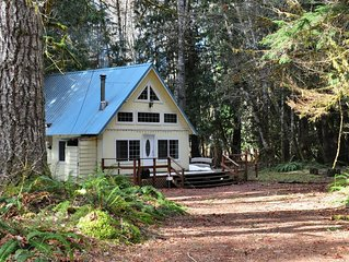 Mt Rainier Cabin Nesteled in the woods at SouthWest Nisqually entrance.