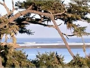 Whales Tale Cabin Fabulous Ocean and River Views, holiday rental in Humboldt County