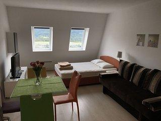 Studio Apartments Kaninska vas