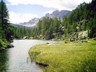 Camelia, suggestioni tra Lago e monti