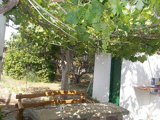 To spiti tou papa sto vouno( the garden house).