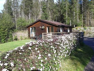 Pine Lodge, one bedroom self catering lodge.