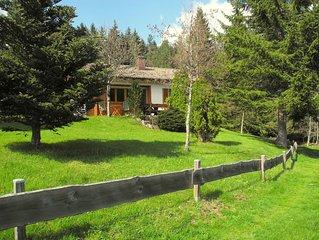 Ferienhaus in ruhiger und traumhafter Sudhanglage mitten im Hochschwarzwald