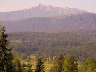 Südbalkon mit herrlicher Aussicht auf die grandiose Bergwelt