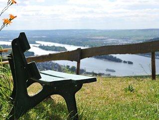 Toller Blick über das Rheintal. Kleine Studiowohnung oberhalb der Weinberge