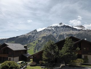 Chalet spacieux et cozy 6p, avec vue sur le Mont Joly !