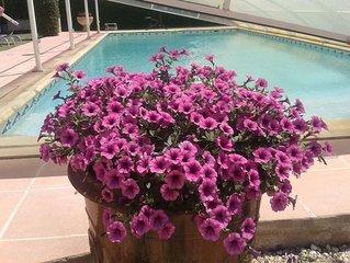 Mas avec piscine à Saint Rémy de Provence