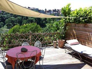 VILLA, 55 m2, BIOT, 4/6Pers, terrasse bois plein sud, piscine dans domaine prive