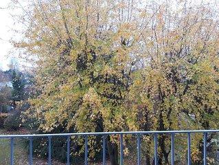 Le Logis de Hansi - Appartement cosy proche du centre ville de Mulhouse