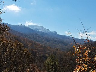 Spectacular Grandfather Mountain  Views from three levels, centrally located