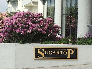 SugarTop Resort - Indoor Pool & Hot Tubs – '$$$ Saver' Ski Sugar Banner Elk NC