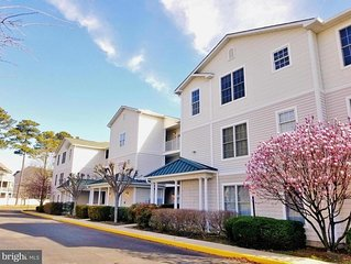 The Tides...20007 Sandy Bottom unit 4102,  2 Bedroom, 2 Bath  6 guests