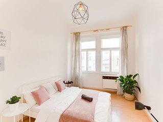 Luxury and warm flat 2 bedrooms  in Letna by the center