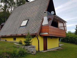 Ferienhaus Lipno nad Vltavou fur 4 Personen mit 2 Schlafzimmern - Ferienhaus