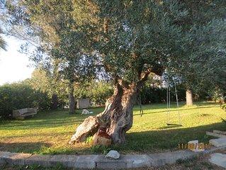 Casetta in Campagna, La piccola 'Cornula', Salento