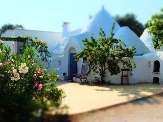 Confort et charme d'une villa avec piscine au milieu d'une oliveraie