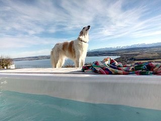 heated outdoor spa with lake & mountain view, pet-friendly