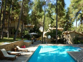 Lovely villa with swimming pool in the forest