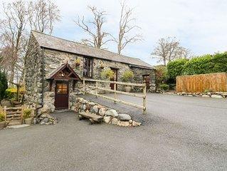 Cyffdy Cottage - Arenig, PARC