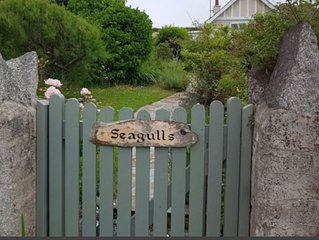 Seagulls, Porthcothan Bay