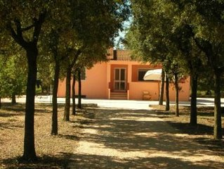 Bernalda: Country house in the middle of 300 orange trees