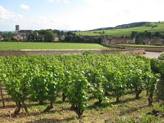 Newly renovated village home with views over the vines of Pommard