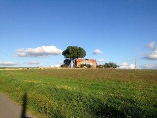 Elegant Large Apartment In The Country in Anguillara  Lake Bracciano Near Rom